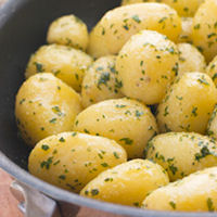 International Kidney Seed Potatoes