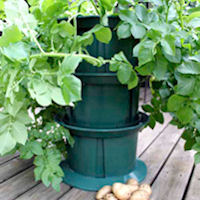 Stackable Potato Planter